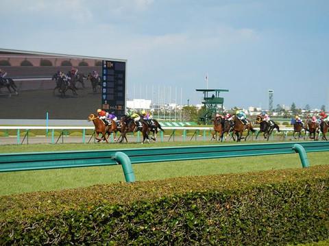 Horseracing_2